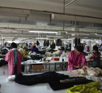 支持河北省毛皮产业发展的6条措施