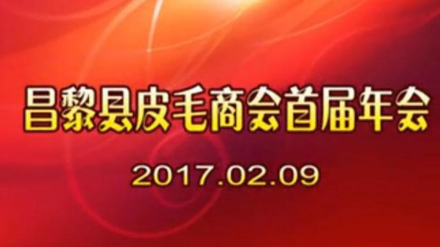 【视频】昌黎毛皮商会首届年会(2017.2.9)