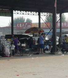 2018.6.19尚村皮毛市场水貂皮行情快报