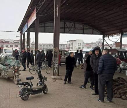 年后,雪中的尚村市场动态(2019.2.13)