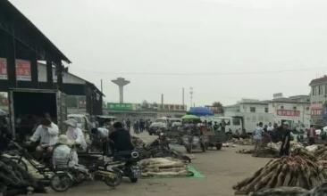 尚村皮毛市场水貂皮行情快报(2019.6.13)
