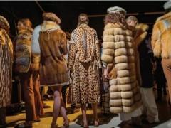 皮草争论依然没有停,它到底该如何存在于时尚界?