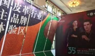 """国家发改委对中国皮革协会在""""2019中国品牌日"""" 活动中工作突出给与表扬"""