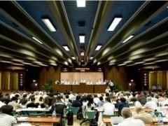 水貂拍卖会第二日:斯瓦卡拉、帕斯条价格上涨!