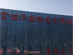 山东临沂皮毛市场激素狐狸行情2019.10.3