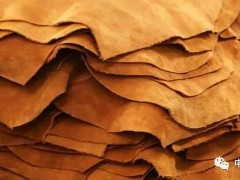 美国原料皮出口增长,皮革行业呈现复苏迹象