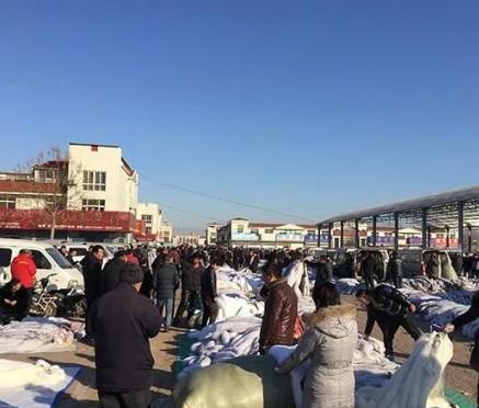 尚村皮毛市场狐貉情况(2019.12.4)