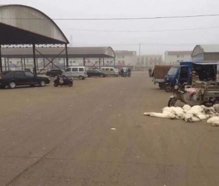 腊月二十四尚村皮毛市场进入休市状态