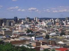 2019年津巴布韦皮革出口同比大幅下跌58%