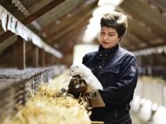 多数毛皮产业从业者期望受到理性合理对待