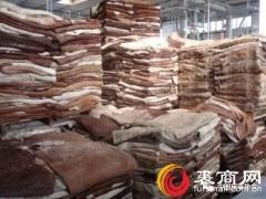 美国原料皮市场价格进一步下跌