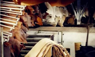 瑞典所有制革厂均使用更加环保能源