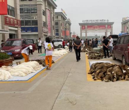 尚村毛皮市场行情(2020.7.11)