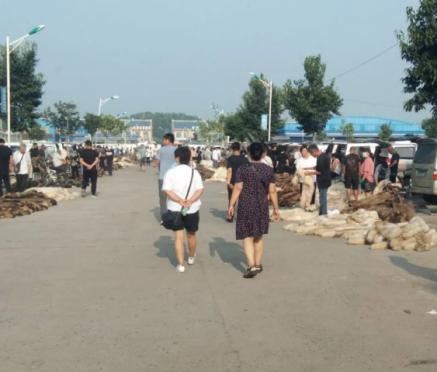 乐亭皮毛市场行情(2020.7.23)