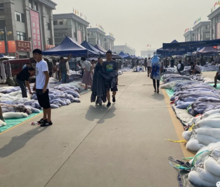 尚村毛皮市场行情(2020.7.29)