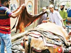 数字平台加速了印度皮革行业从疫情中的复苏