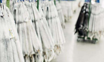 丹麦拍卖会水貂皮销售结果(黑貂、白貂、马赫根尼)