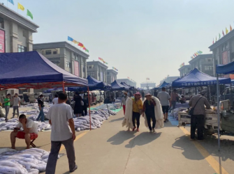 尚村毛皮市场行情(貉子熟皮成交增加2020.9.6)