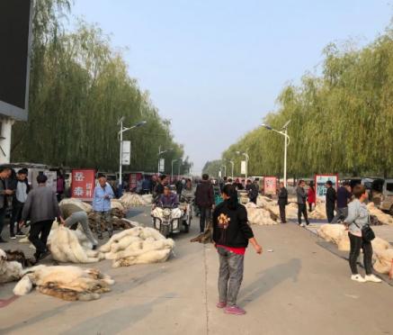 昌黎皮毛交易市场成交好(2020.9.28)