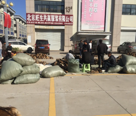 尚村毛皮市场行情2020.10.17