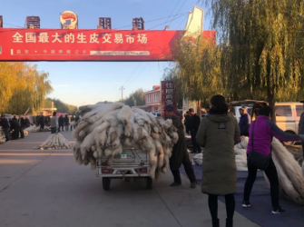 昌黎皮毛市场行情(2020.10.28)