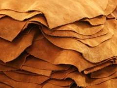 全球原料皮市场是否来到拐点?