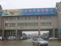 尚村皮毛市场行情信息2021.2.27