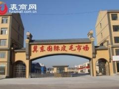乐亭皮毛交易市场情况2021.3.15