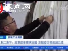 皮革皮草产业调查:浙江海宁皮草需求回暖,水貂价格上涨超5成!