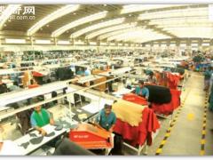 本财年前10个月,巴基斯坦皮革出口增长13.29%