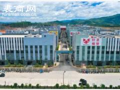 蓝山县皮具箱包小镇获评省级特色工业小镇